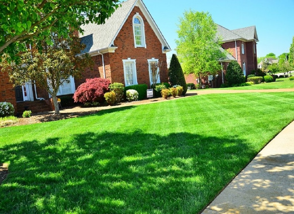 5 Suitable Ways to Maintain a Healthy Lawn