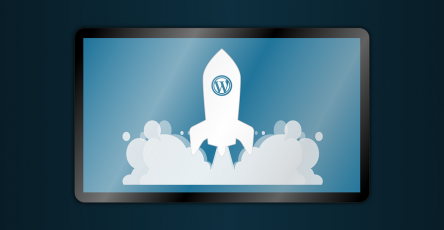 wordpress website